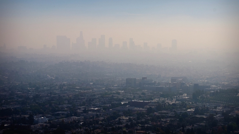 The Air Pollution Particles You Breathe May End Up In Your Brain